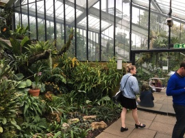 Kew Gardens Meg